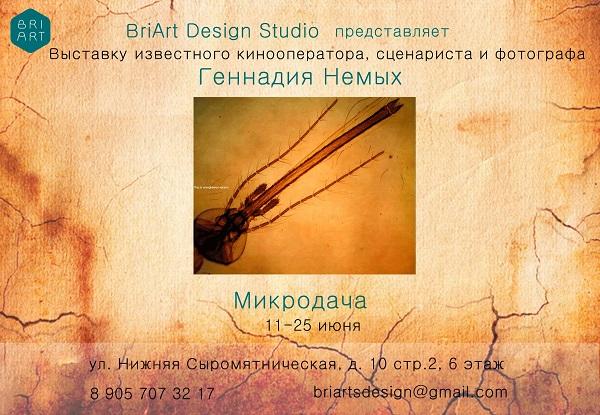 записки о художниках АРТ-РЕЛИЗ.РФ, Афиша Геннадий Немых Микродача