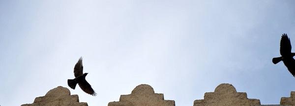 фото: Пино Бароне (Pino Barone) профессор искусствоведения, директор Епархиального Музея, Санта Северина