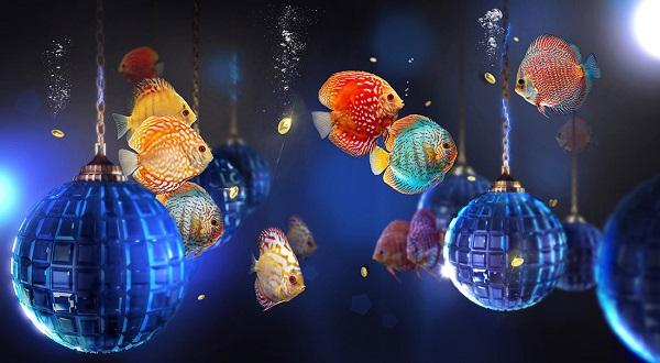 Сергей Погорелый А эта композиция может стать прекрасным сюжетом для создания новогоднего настроения