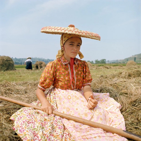 """Петер Корниш """"Девушка ворошащая сено, отдыхает""""  1974 г."""